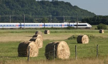 Speciale Treni: più passeggeri per le ferrovie italiane