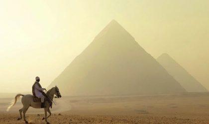 Egitto punta sulla promozione digital