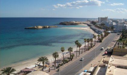 """A Monastir c'è il porto più """"verde"""" d'Africa"""