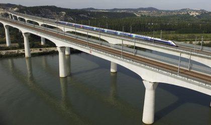 Speciale Treni: in carrozza per business e sostenibilità