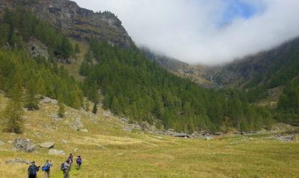 Con WWF Travel si scopre la natura italiana