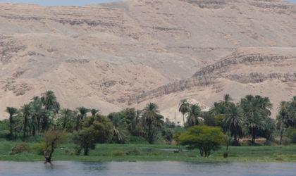 Con Metamondo le Feste sono lungo il Nilo